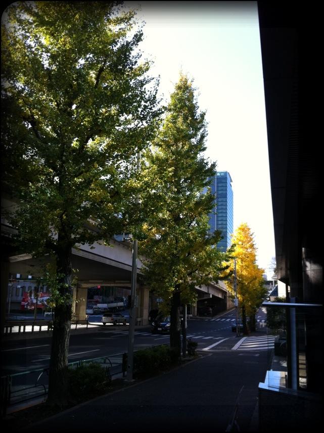 photo_2.JPG